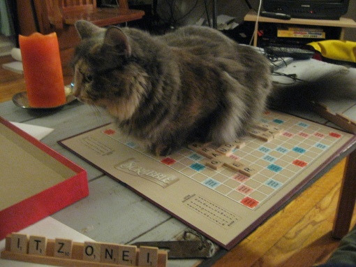 Try to play Scrabble now!